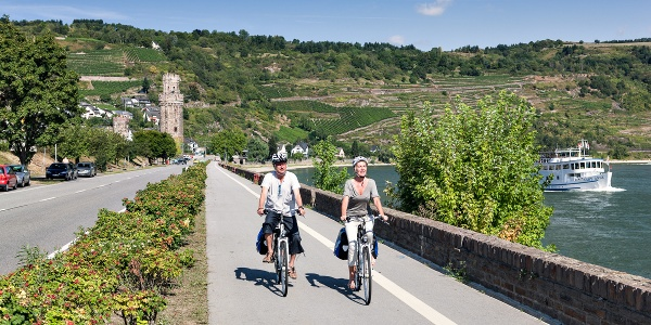 Rhine Cycle Route near Oberwesel