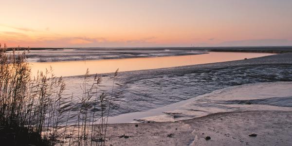 Sonnenuntergang am Weltnaturerbe Wattenmeer