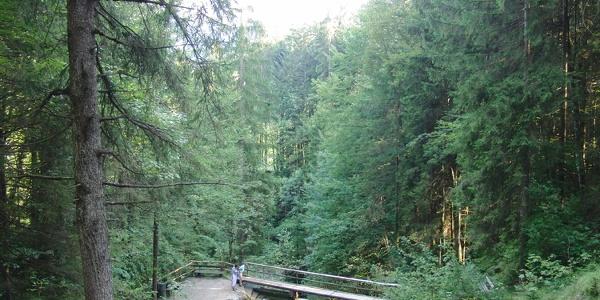 Staubecken oberhalb des Wasserfalls