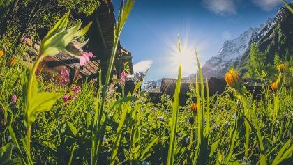 Naturparadies Lötschental mit 200 Km Wanderwegen