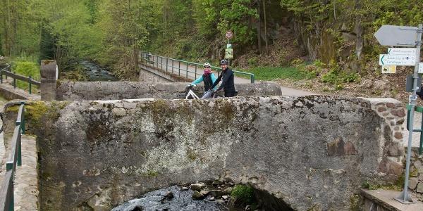 Saubachtal mit Steinbrücke Meißner 8