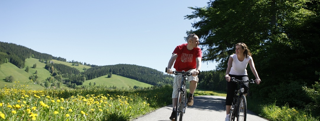 Cycling in Black Forest: the best bike routes