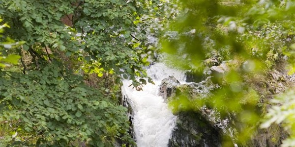 Sommerau Wasserfall