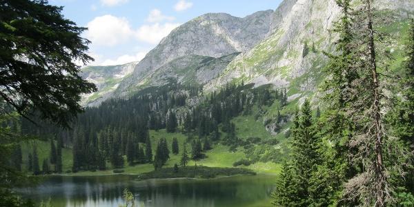 Beim Sackwiesensee (19.07.2012)