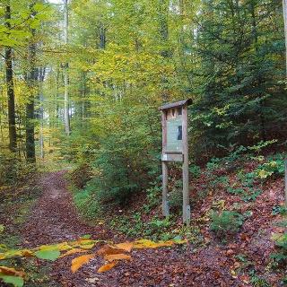 Waldlehrpfad & Skulpturenweg Teisendorf © RoHa Fotothek