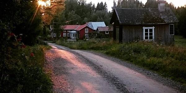 Nirsgård