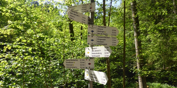 Wo wollen wir hin? Viele Wanderwege kreuzen hier.