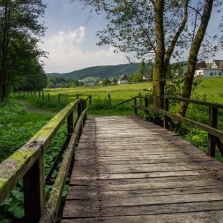 Erlenweg entlang der Latrop bei Oberfleckenberg