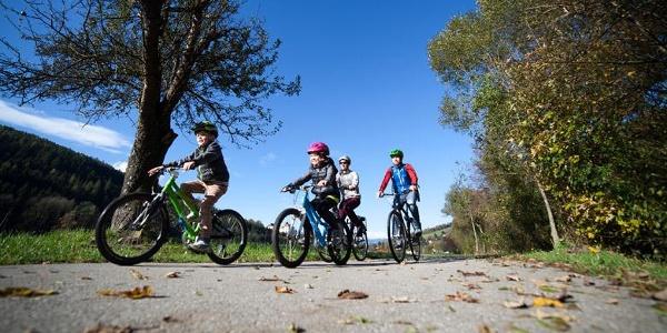 Der familienfreundliche Feistritztal-Radweg