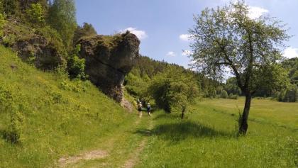 Idyllischer Wanderweg hinter Oberailsfeld