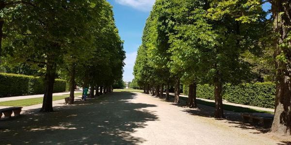 Start im Schlosspark Pillnitz