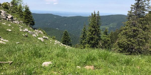 Ausblick kurz vor dem Gipfel