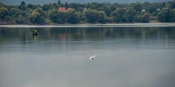A Fehérvárcsurgói-víztározó