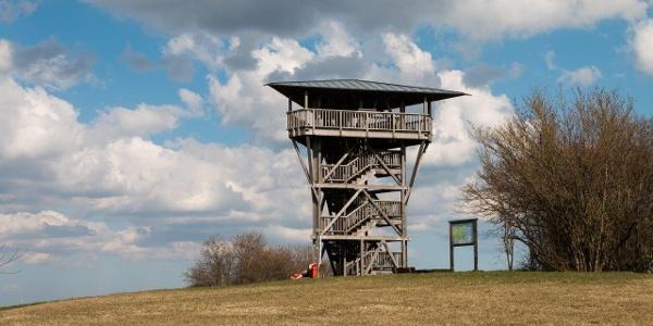 Aussichtsturm Mühlenberg