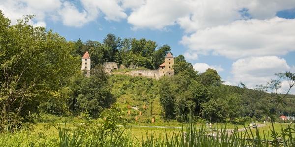 Blick auf die Ruine Kaltenburg
