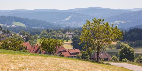 Breitnau-Roßberg