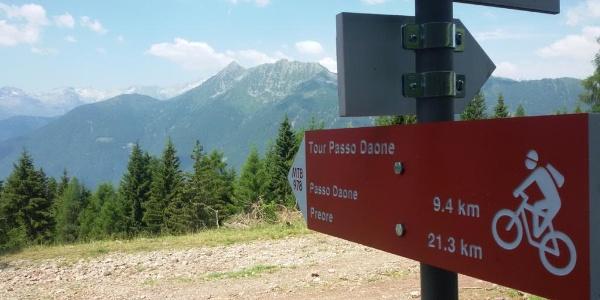 Estate-Tour Passo Daone-Inizio percorso pascoli malga Plan-Foto M. Lorenzetti