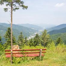 Etappe Buchenberg - Hornberg