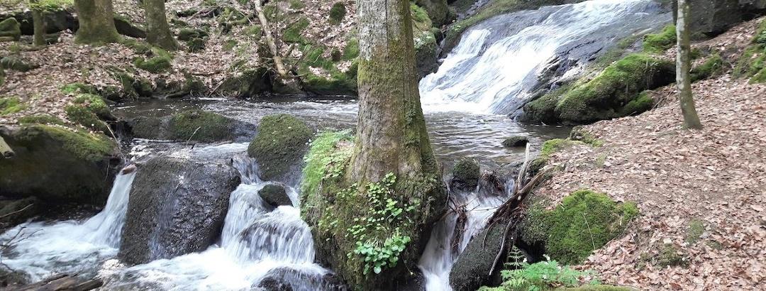 Nagelsteiner Wasserfälle