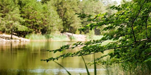 Göller lake