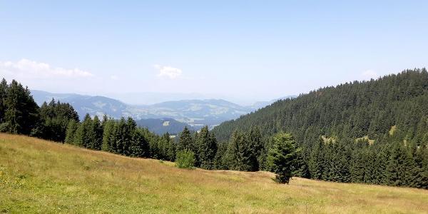 Ausblick zum Bodensee vom Hochhäderich