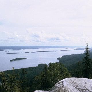 View from Koli mountain
