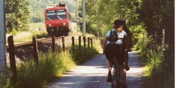 Auf dem Seeweg von Rapperswil nach Schmerikon