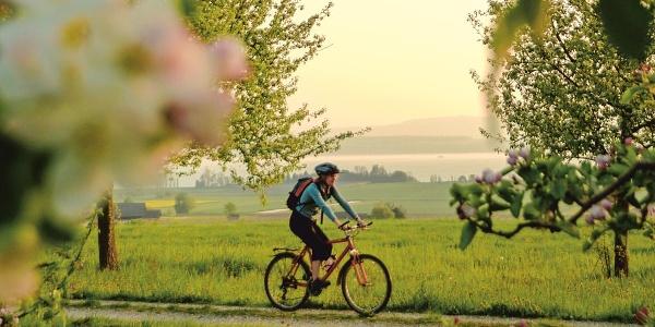 Unterwegs auf der Genuss-Velotour im Thurgau