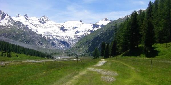 Blick zur Gletscherwand