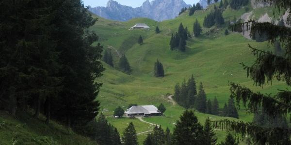 The Brecca Valley