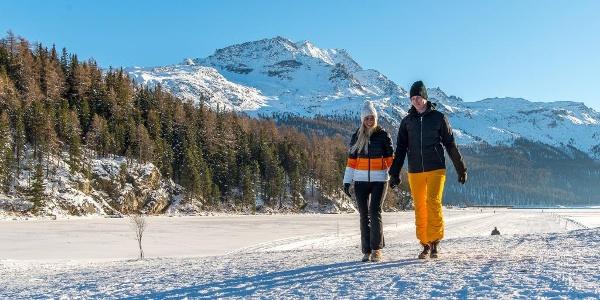 Winterwandern Sils Maloja