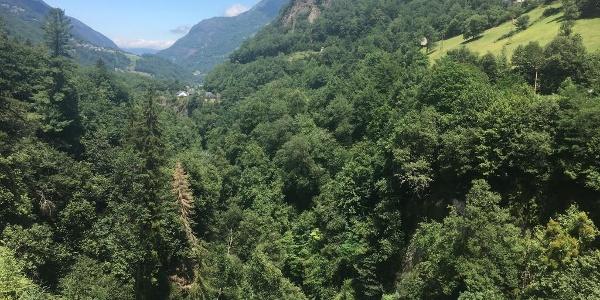 View from Pont Napoleon