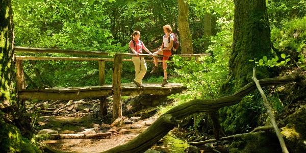 Steckeschlääferklamm Binger Wald