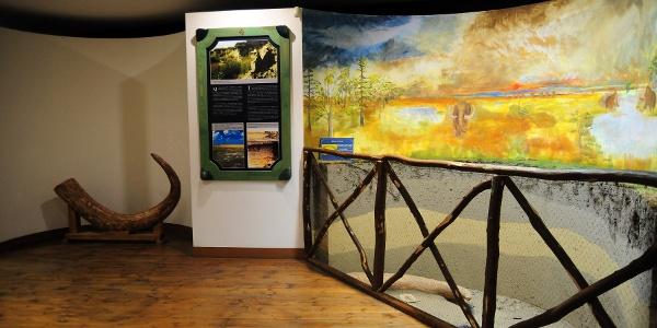 A Dél-Tiszántúl természeti értékeit bemutató kiállítás