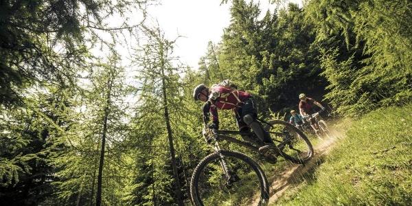 Abfahrt Nene Trail (696)
