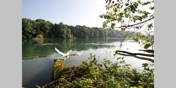 am Rheinufer von Bad Zurzach