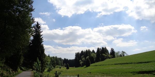 Am Grenzweg in Rechenberg-Bienenmühle Kammtour Erzgebirge