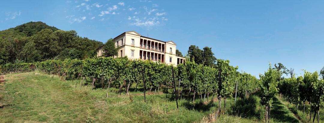 Villa Ludwigshöhe