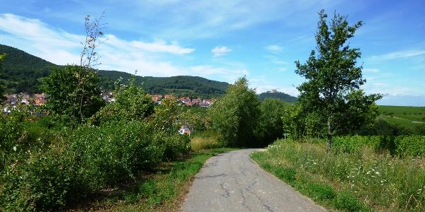 Blick auf St. Martin und das Hambacher Schloss