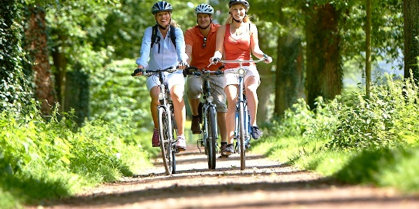 Radfahrer auf der Grafschafter Fietsentour 2