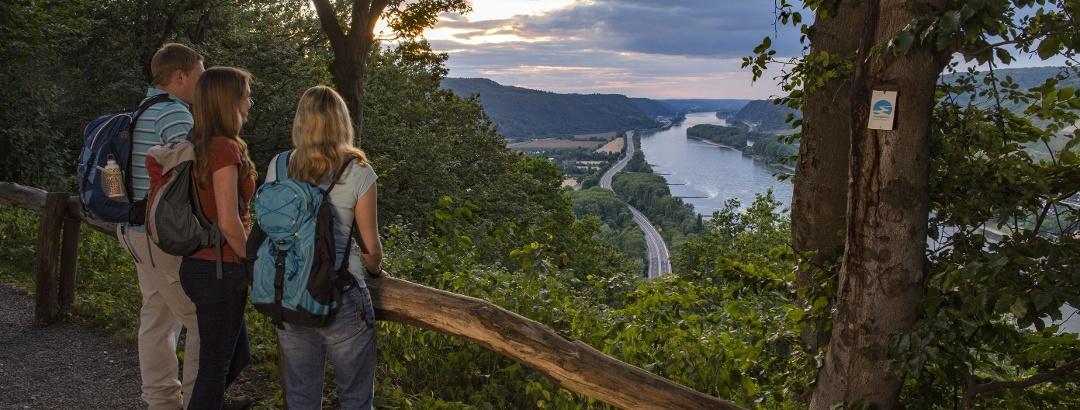 Ausblicke ins Rheintal
