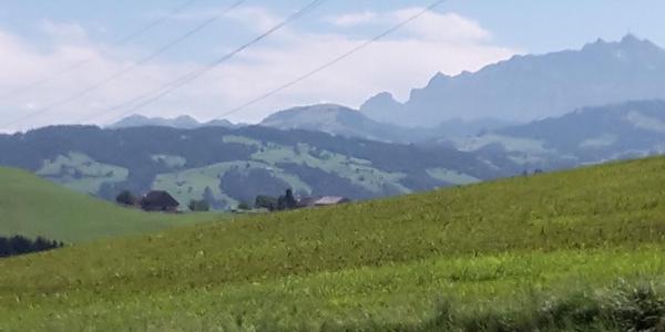 Toggenburg#3
