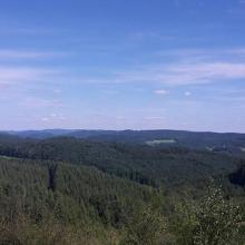 Blick vom Feldberg