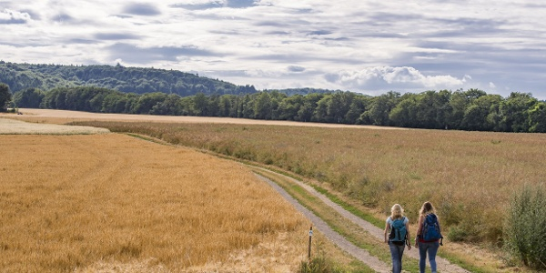 Auf weiter Flur rund um den Krahnenberg