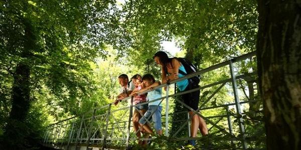 Brücke am Tourenportal am Wanderparkplatz Vogelsang
