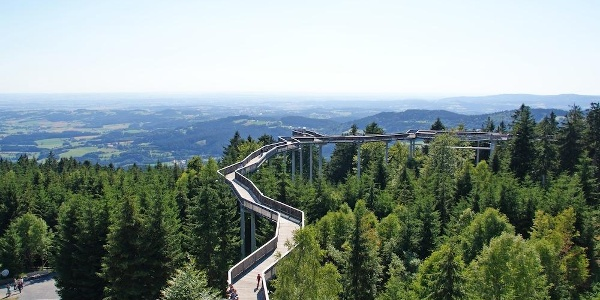 WaldWipfelWeg Maibrunn