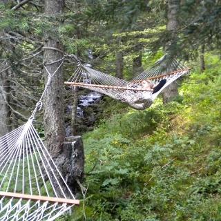 Entspannung pur im Hängemattenwald Pizol