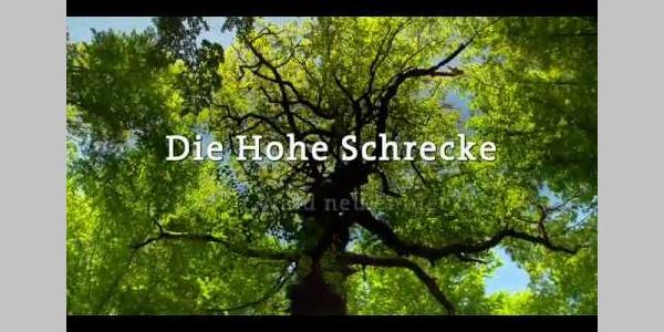Hohe Schrecke   Alter Wald mit Zukunft Imagefilm