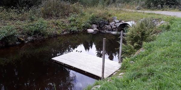 Badplatsen i Mårtsbo