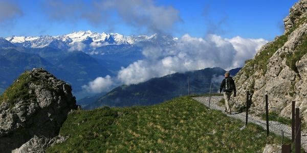 Weg zum Tomlishorn mit Blick zu den Berner Alpen.